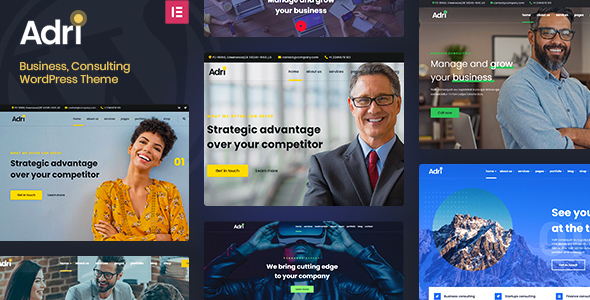 [Free Download] Adri – Business and Consulting WordPress Theme (Nulled) [Latest Version]