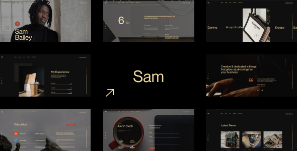 [Free Download] Sam Bailey – Personal CV/Resume WordPress Theme (Nulled) [Latest Version]