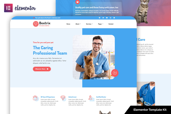 [Free Download] Beetrix – Pet Clinic & Hospital Elementor Template Kit (Nulled) [Latest Version]